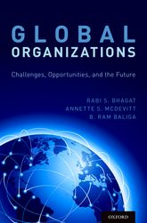 Global OrganizationsChallenges, Opportunities, and the Future